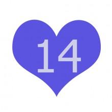 הודעה משמחת בשישי #14