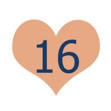 הודעה משמחת בשישי #16
